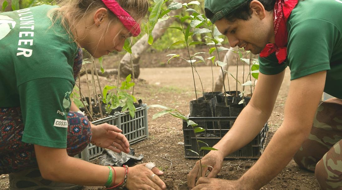 Conservation volunteers and staff help with reforestation as part of our flexible volunteer projects abroad.